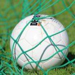 Pallone in Rete
